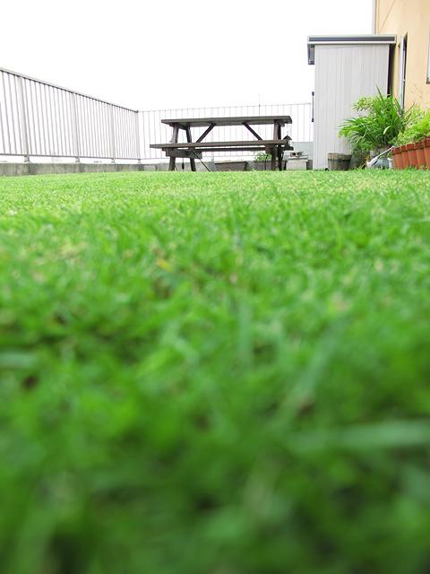 芝刈り日和