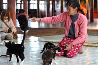 Nga Hpe Kyaung monastery