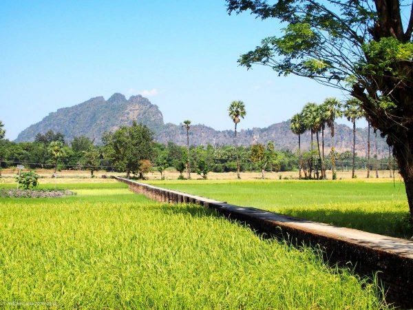Lakkana village
